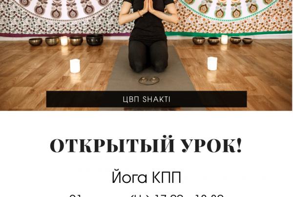 открытое занятие лайя йога (6)